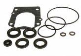 Gear Case Seal Kit, DF70A/80A/90A
